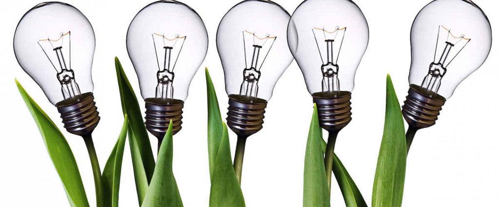 coltivare.idee-1024x425